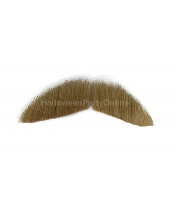 Halloween Party Costume Moustaches HB-003 Brown #22