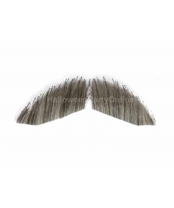 Halloween Party Costume Moustaches HB-003 Grey #59